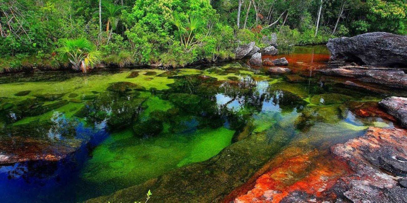 [Jeu] Association d'images - Page 3 La-plus-coloree-des-rivieres-se-situe-en-colombie-125811